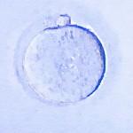 Coup de froid sur les ovocytes